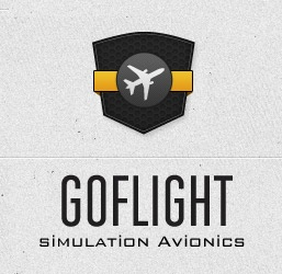GoFlight - Brand In Focus