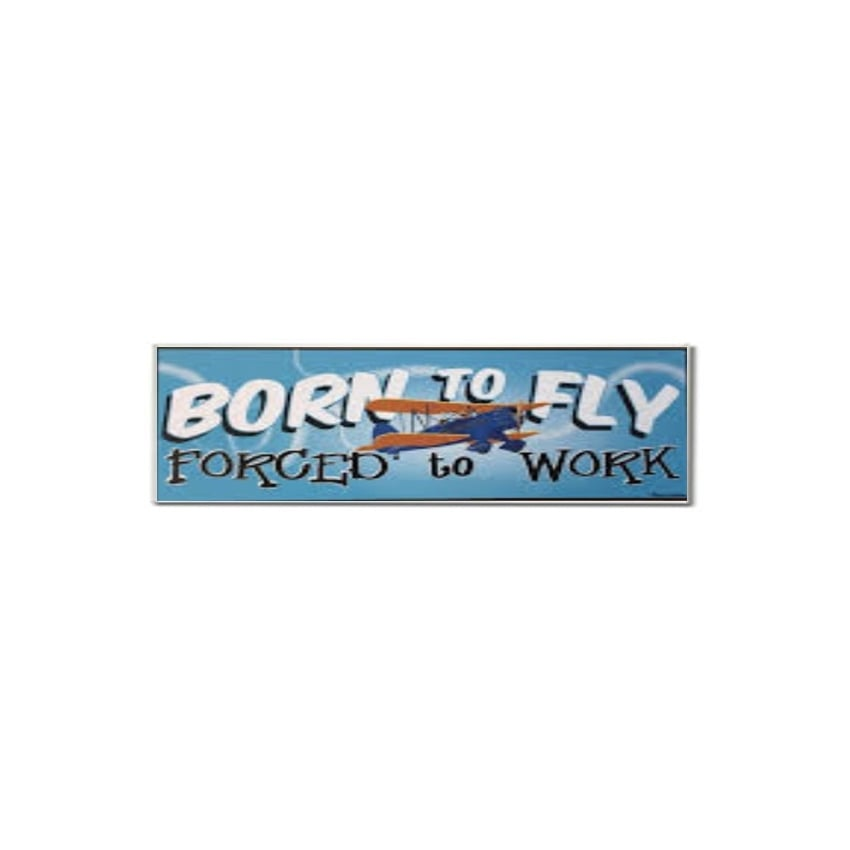 Born To Fly Fridge Magnet
