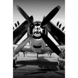 Curtiss-Wright SB2C Helldiver Glass Picture