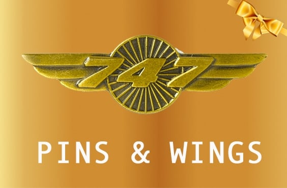 PINS AND WINGS