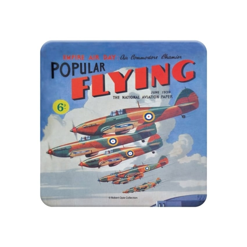 Popular Flying Coaster - Single