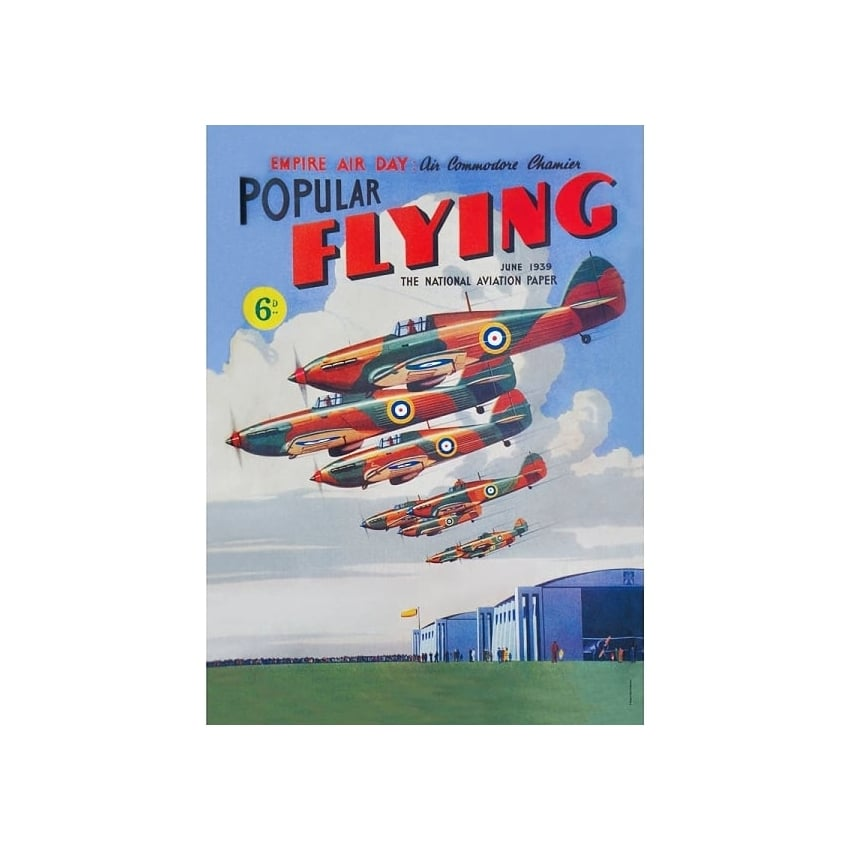 Popular Flying Tin Sign