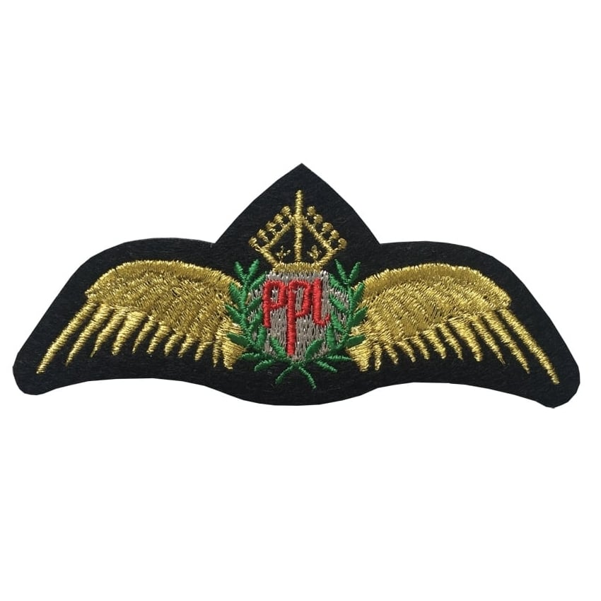 PPL Gold Wings Iron On Patch